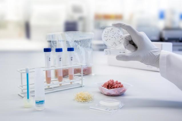 Nuova intesa per il Regolamento sui criteri microbiologici applicabili agli alimenti