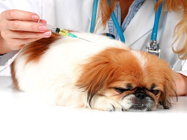Guida alla gestione del farmaco in ambulatorio